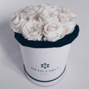 Les Royales - Roses éternelles